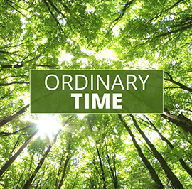 Ordinary Time: Reflections from Bishop Rickel